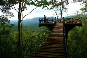 Inicia tu propio negocio de Empresas ecoturísticas