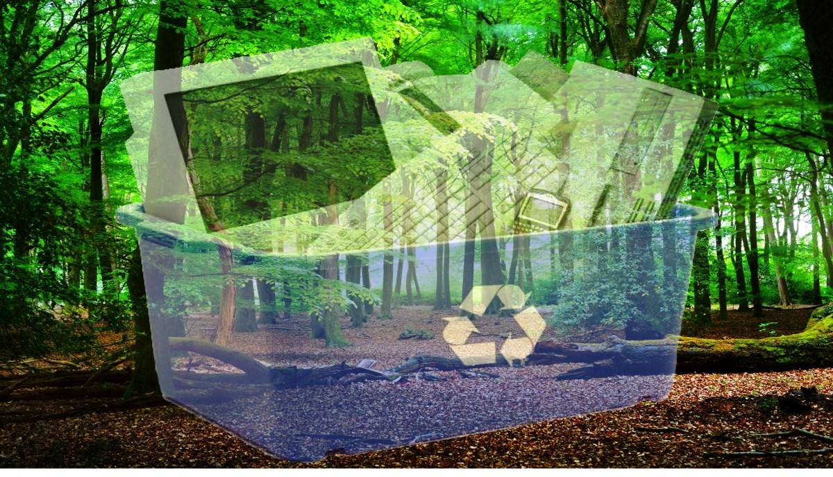 Los ebooks y el medio ambiente ¿Realidad o mito?