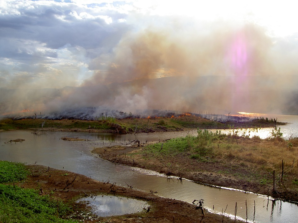 Cambio climático: ¿Cómo lo enfrenta América Latina?