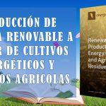 Producción de energía renovable a partir de cultivos energéticos y residuos agrícolas – MDPI